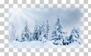 Ultraviolet Winter Snow PNG
