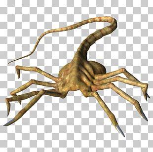 Alien Predator Necronomicon PNG