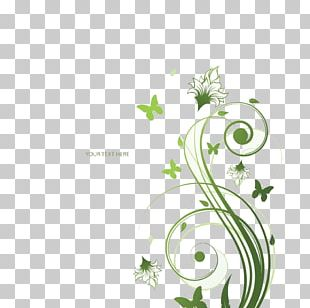 Flower Stock Photography Green Floral Design PNG