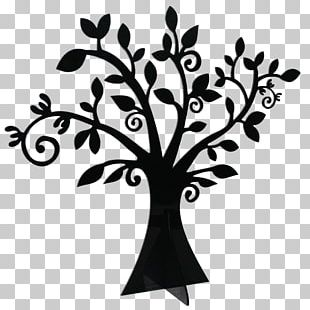 Tree Drawing Publishing Root PNG