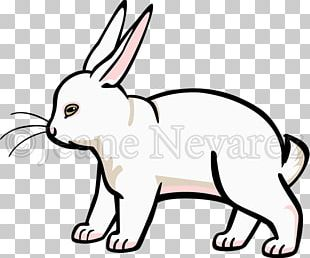 Whiskers Domestic Rabbit Cat Hare PNG