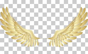 Wing Gold PNG