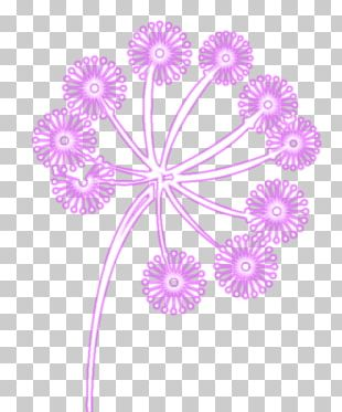 Floral Design Cut Flowers Dahlia Pattern PNG