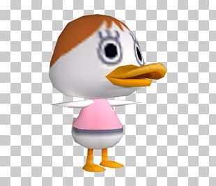Duck Beak PNG