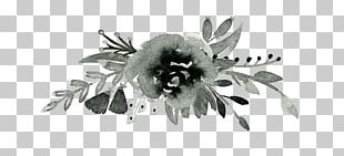 Graphics Design Flower Drawing PNG