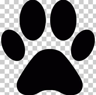 Cat Dog Paw Printing PNG