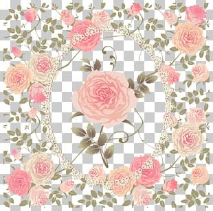 Hand Painted Flower Shading PNG