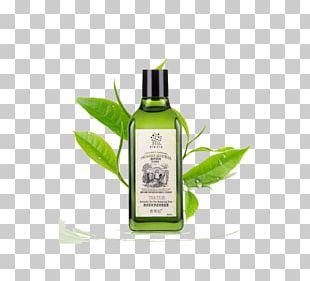 Tea Tree Oil Acne Taobao Shopping PNG