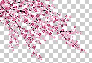 Cherry Blossom Sakura No Hanabiratachi Wall Painting PNG