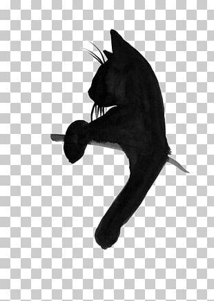 Grumpy Cat Tattoos Kitten T-shirt Black Cat PNG