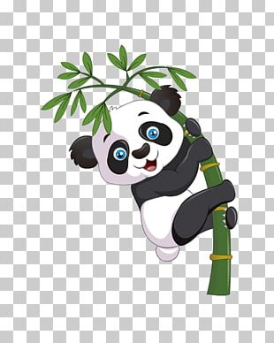 Giant Panda Bear Cartoon Bamboo PNG
