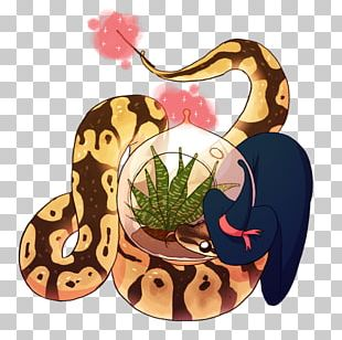 Snakes Reptile Ball Python Animal Spotted Python PNG