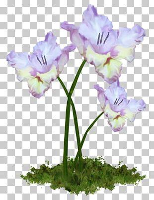 Cut Flowers Flower Bouquet Tulip PNG