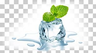 Electronic Cigarette Aerosol And Liquid Ice Cube Mint Flavor PNG