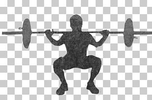 Barbell Weight Training Physical Fitness Vehicle PNG