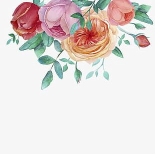 Hand-painted Watercolor Flower Decorative Frame PNG