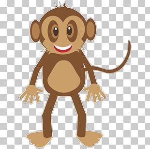 Monkey Primate Ape PNG
