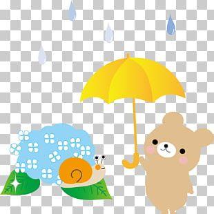 East Asian Rainy Season Northern Kyushu Climatological Normal French Hydrangea PNG