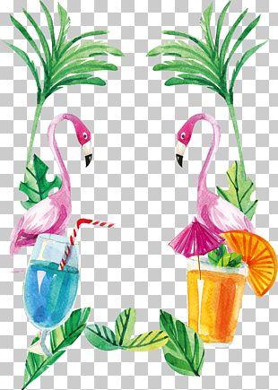 Flamingos Euclidean PNG