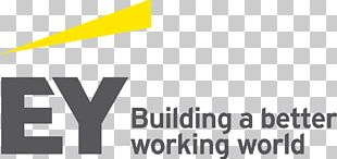 Ernst & Young Business Assurance Services Tax Deloitte PNG