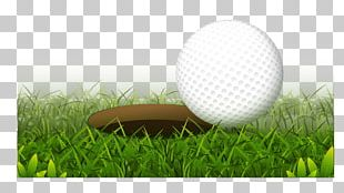 Golf Ball Golf Club Hole PNG
