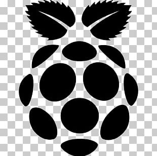 Raspberry Pi Computer Icons Raspbian Web Browser PNG