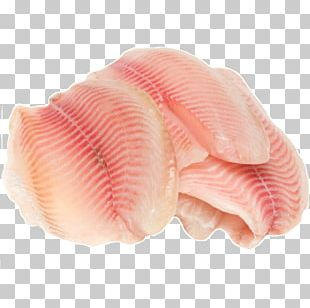 Tilapia Fish Fillet Fish Fillet Fish Steak PNG
