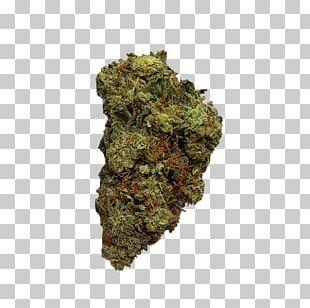 Kush Cannabis Blue Dream Haze Leafly PNG