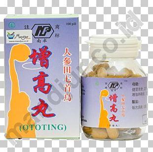 Dietary Supplement Panax Notoginseng Health Flavor Traditional Medicine PNG