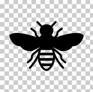 European Dark Bee Insect Stencil Honey Bee PNG