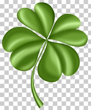 Four-leaf Clover Saint Patrick's Day Computer Icons PNG