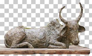 Sculpture Contemporary Art Work Of Art Artist PNG