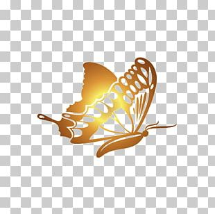 Butterfly Gold Software PNG