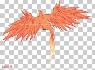 Tattoo Feather Phoenix PNG