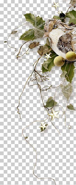 Floral Design Twig Leaf Plant Stem PNG