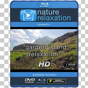 4K Resolution Display Resolution High-definition Television 1080p High-definition Video PNG