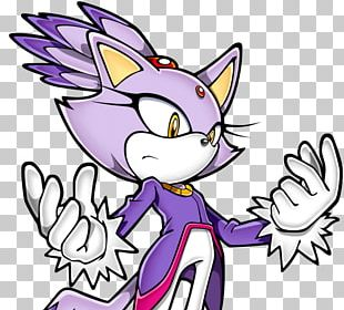 Amy Rose Cat Sonic Rush Shadow The Hedgehog Sonic And The Black Knight PNG