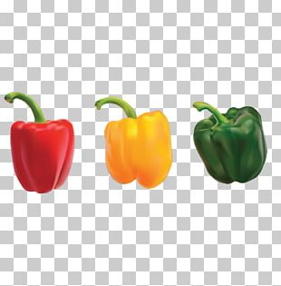 Bell Pepper Nigerian Cuisine Omelette Eating Chili Pepper PNG