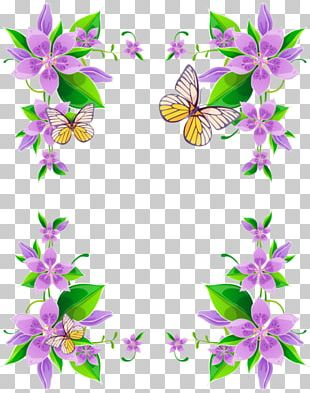 Borders And Frames Flower Floral Design Purple PNG