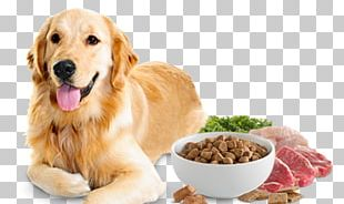 Dog Food Cat Food Pet Food PNG