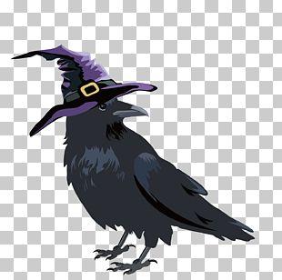 Crows Halloween PNG