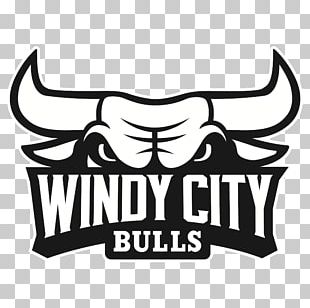 Windy City Bulls NBA Development League Chicago Bulls Canton Charge PNG