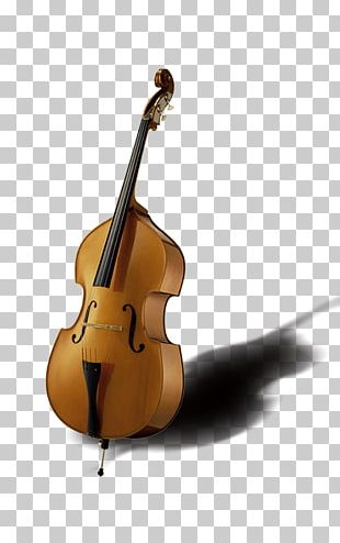 Bass Violin Musical Instrument String Instrument PNG
