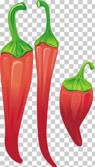 Tabasco Pepper Serrano Pepper Capsicum Annuum Var. Acuminatum Chili Pepper Paprika PNG