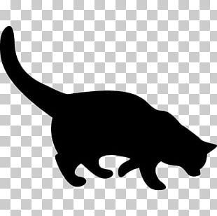 Whiskers Silhouette Black Cat PNG