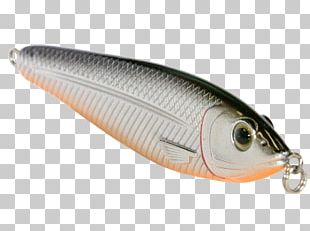 Spoon Lure Oily Fish AC Power Plugs And Sockets PNG