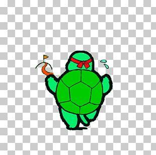 Turtle Raster Graphics PNG