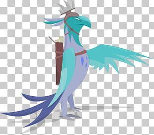 Beak Illustration Fauna Feather PNG
