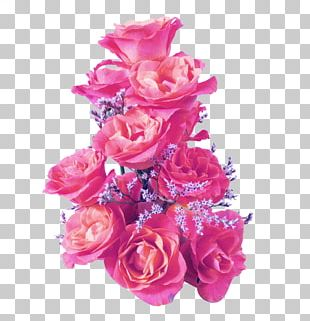 Rose Quotation PNG