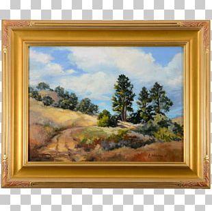 Window Still Life Frames /m/083vt Wood PNG